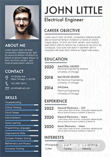 Free Professional Civil Engineer Resume Template In Adobe
