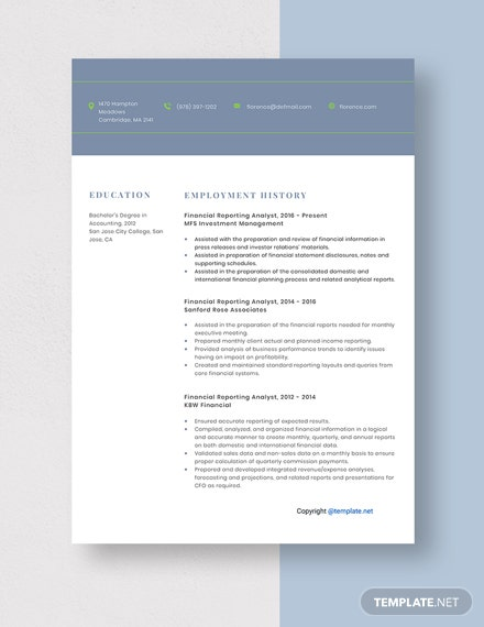 Financial Reporting Analyst Resume Template
