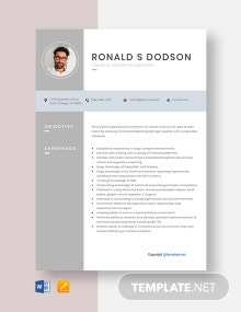 Free Financial Reporting Manager Resume Template