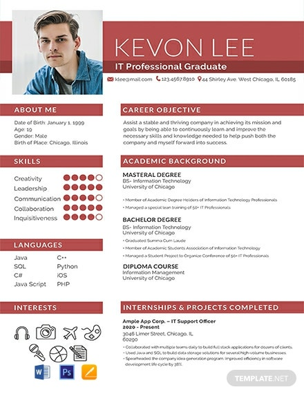 Professional Resume for Freshers Template