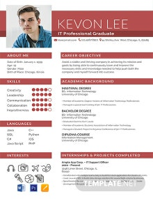 Free Professional Resume for Freshers