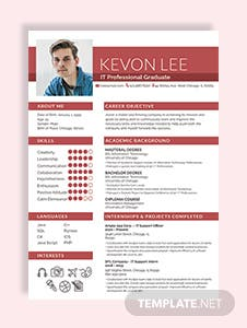 Professional Resume for Freshers