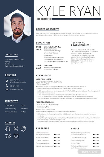 Free Web Developer Resume Template: Download 160+ Resumes in PSD ...