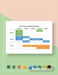 New Product Development Roadmap Template