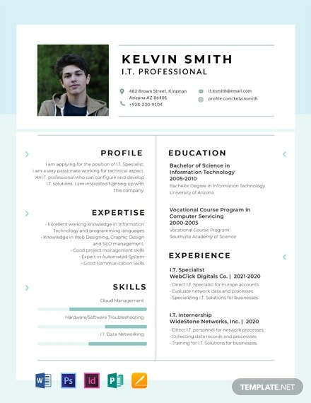 Free IT Professional Experience Resume