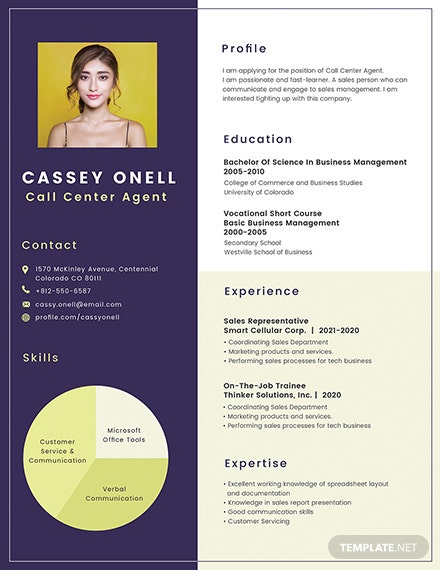 Free No Experience Call Center Resume Template Download 200 Resume