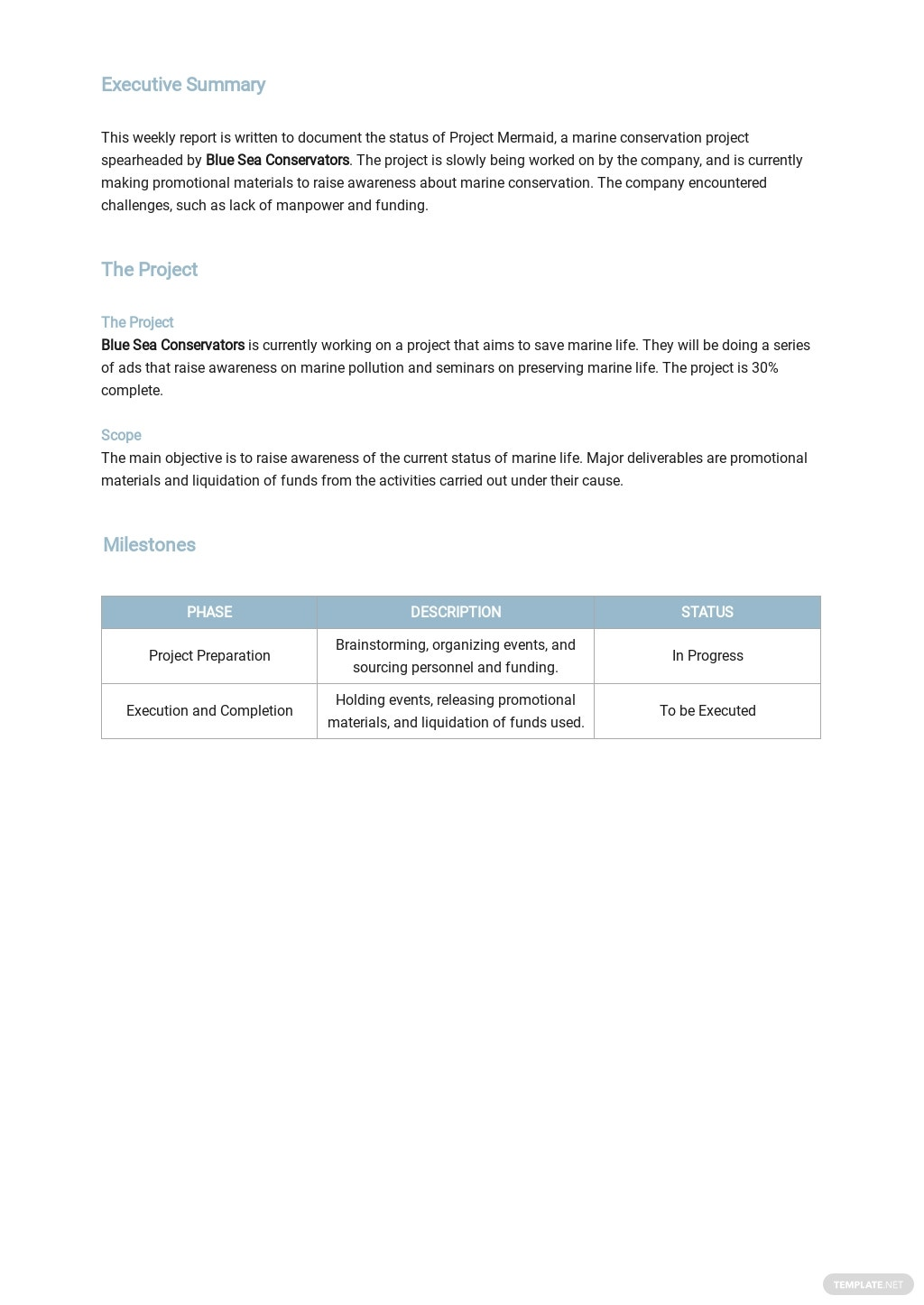 Free Company Weekly Status Report Template 1.jpe