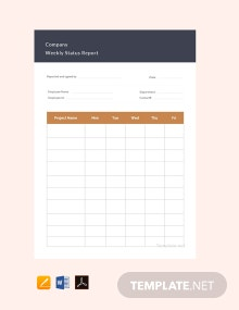 Free Company Weekly Status Report Template