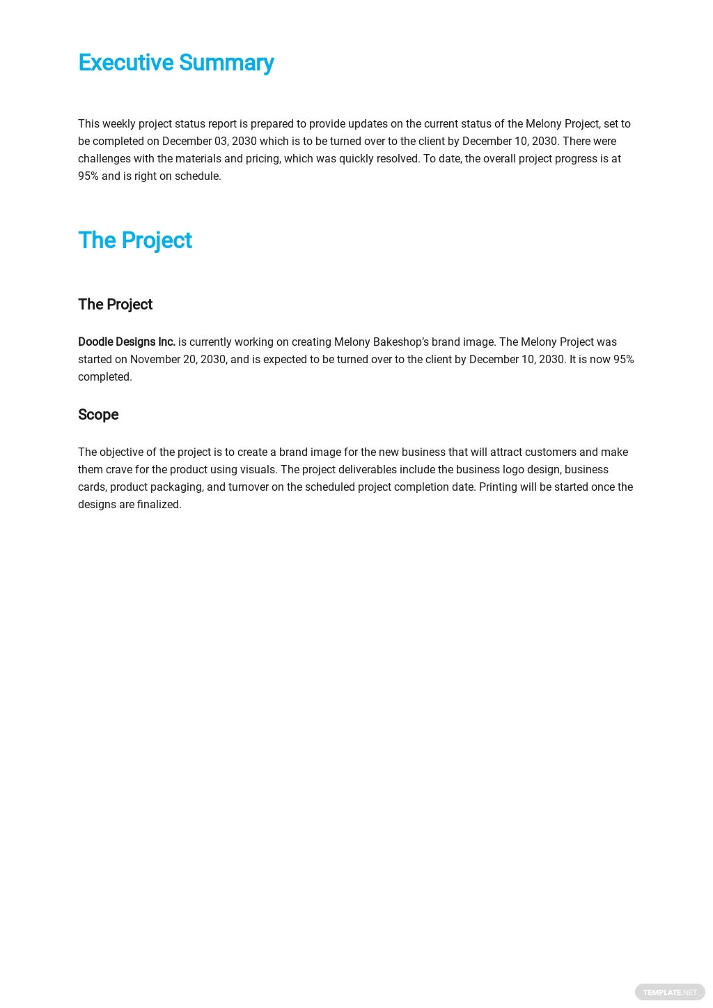 Weekly Project Status Report Template  - Google Docs, Word