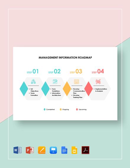 Management Information Roadmap Template