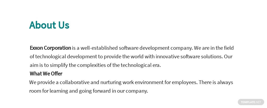 Free Engineering Executive Job Ad/Description Template 1.jpe