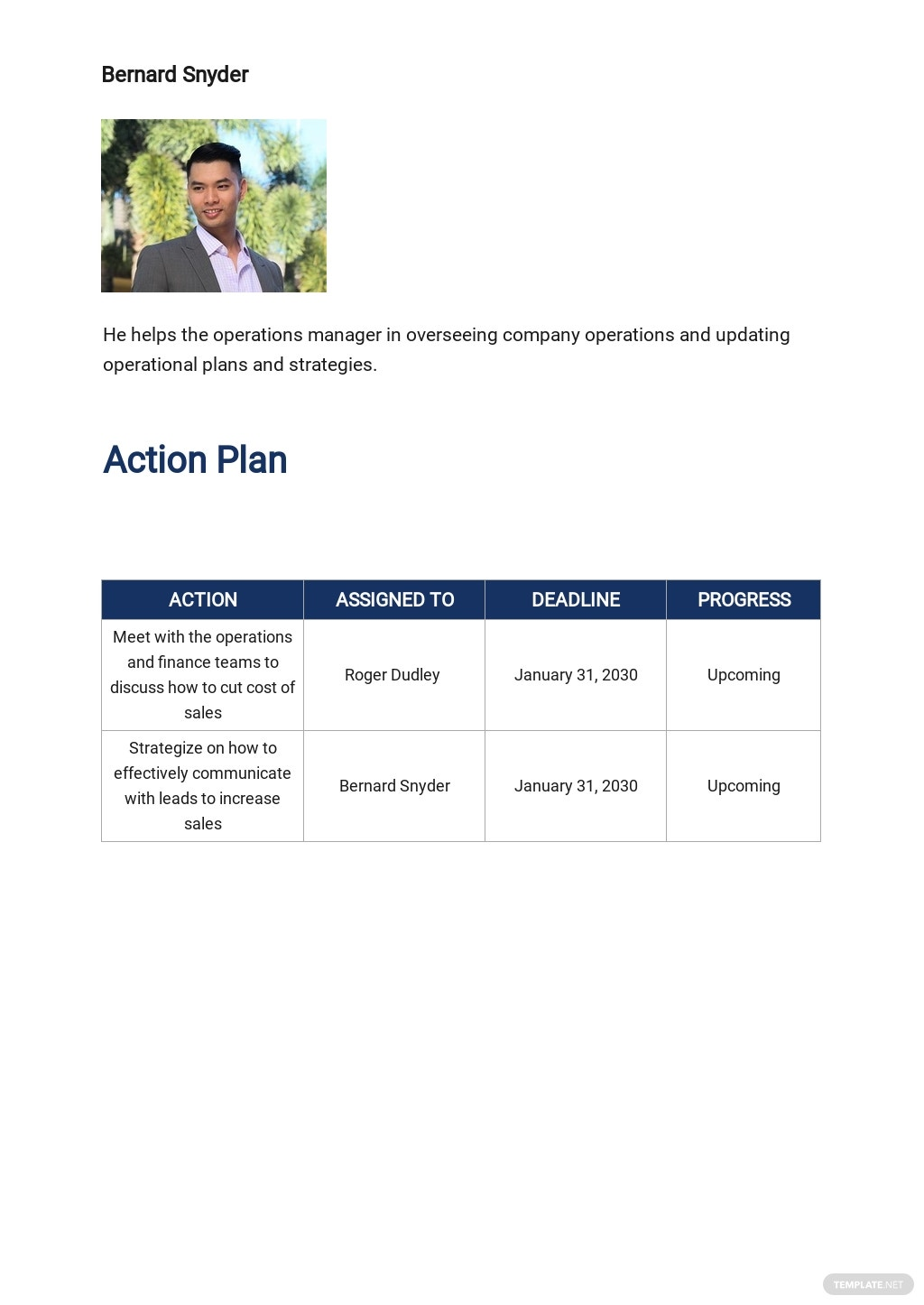Free Simple Operational Plan Template 3.jpe