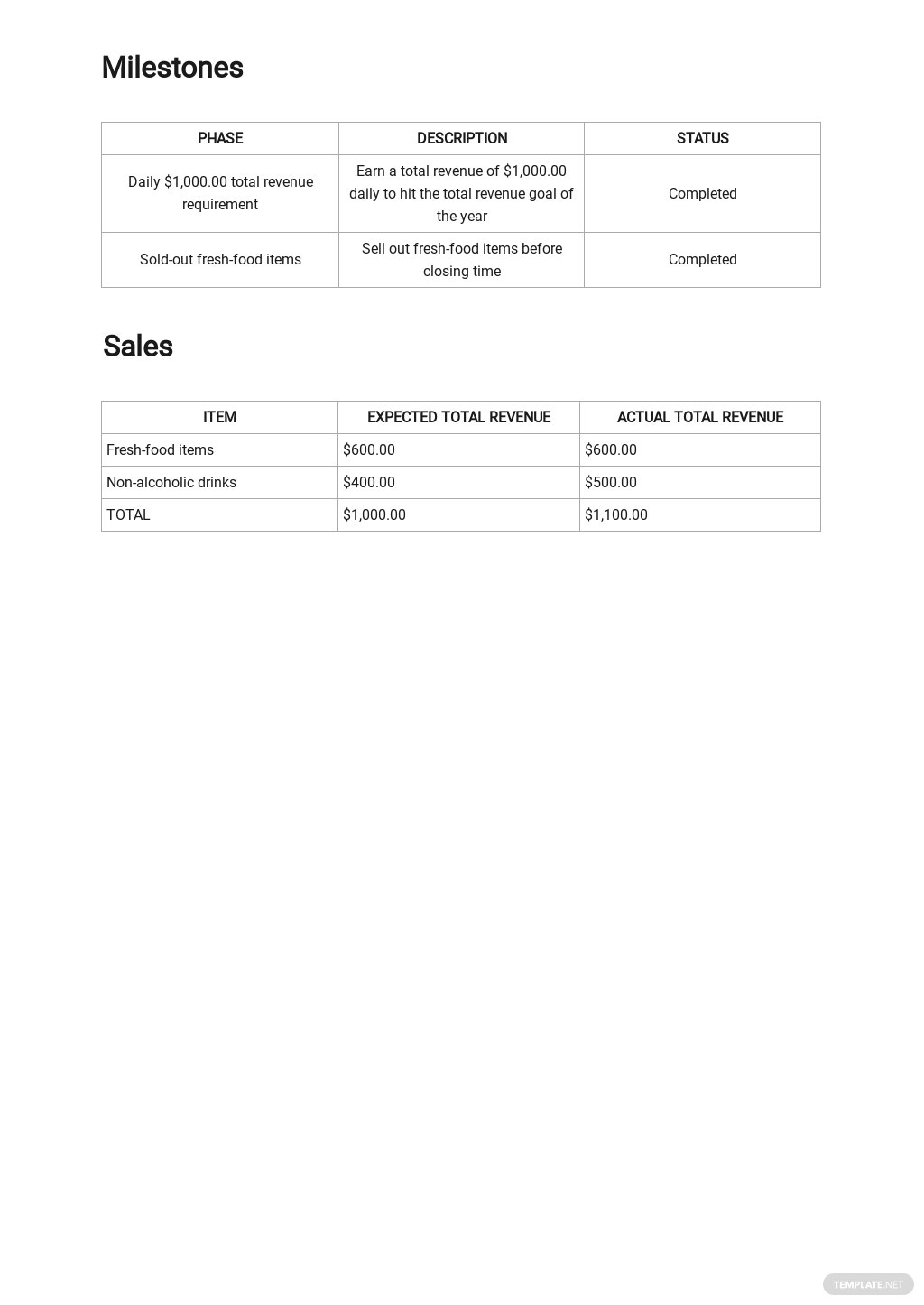 Free Daily Sales Activity Report Template 2.jpe