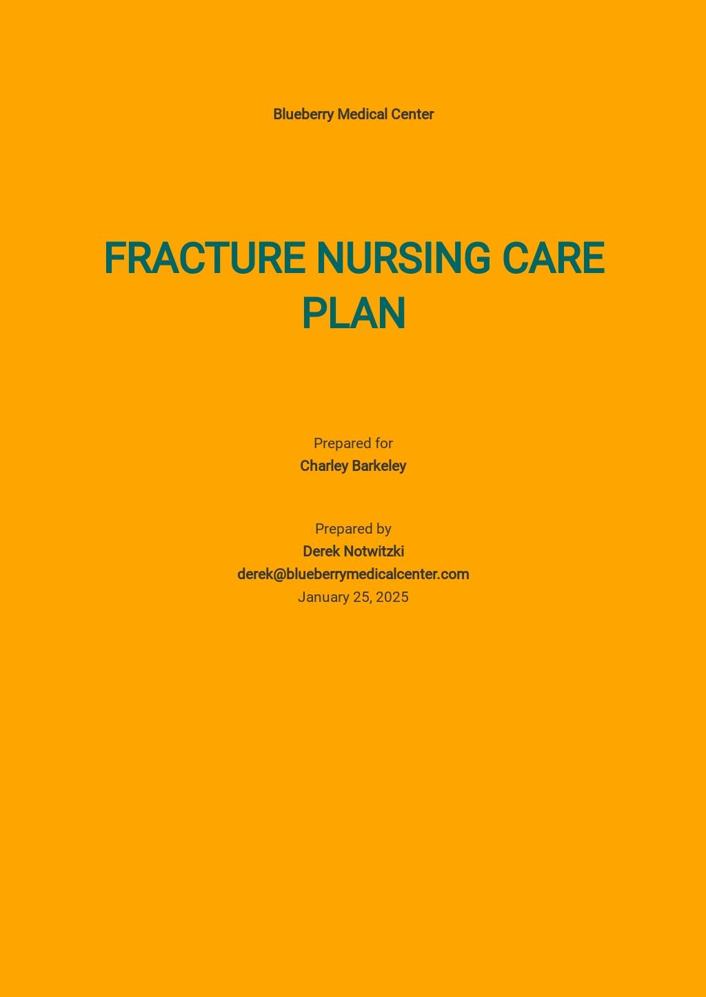 Sample Nursing Care Plan Template