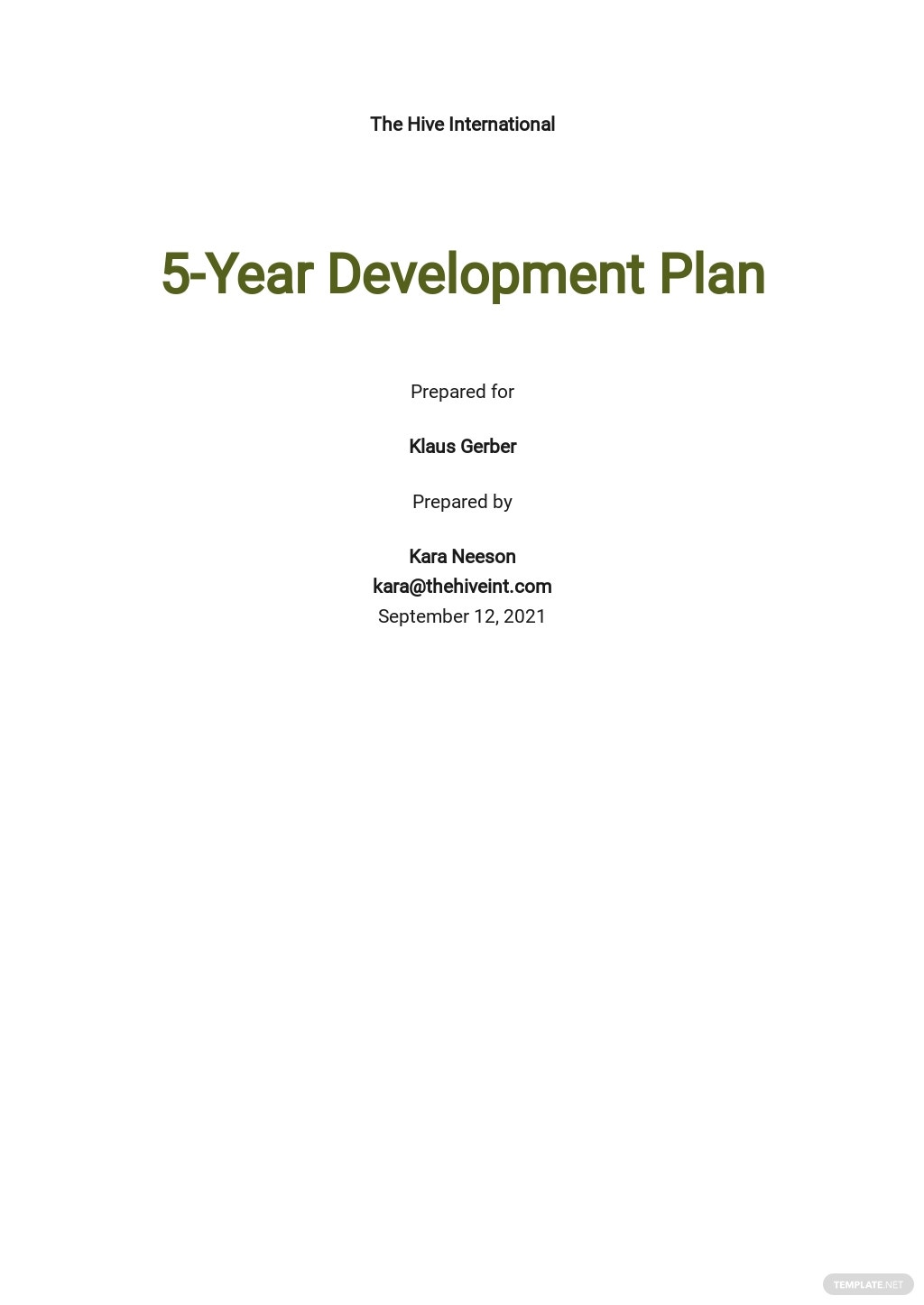 5 Year Development Plan Template.jpe