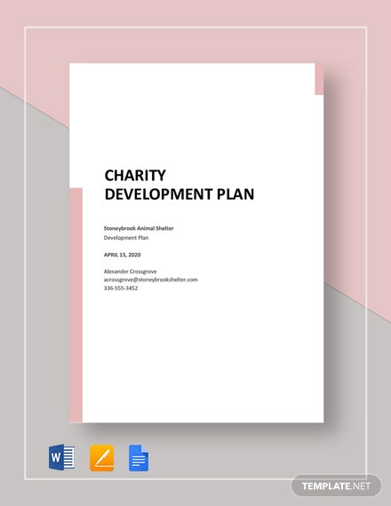 Charity Development Plan Template