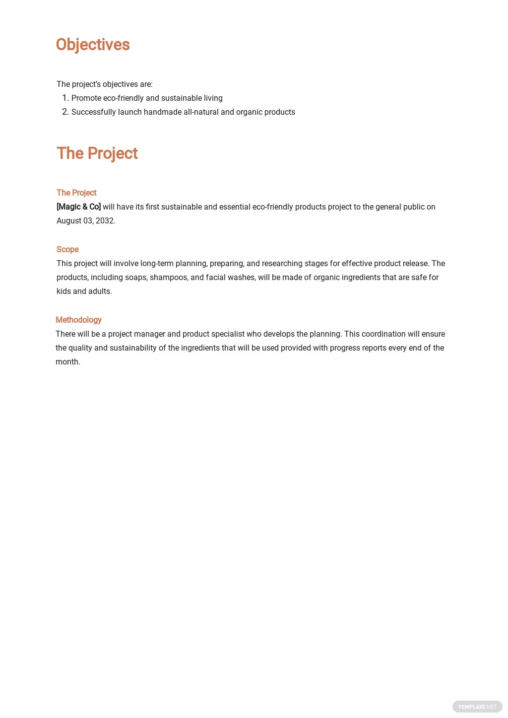 Retail Store Project Plan Template 1.jpe