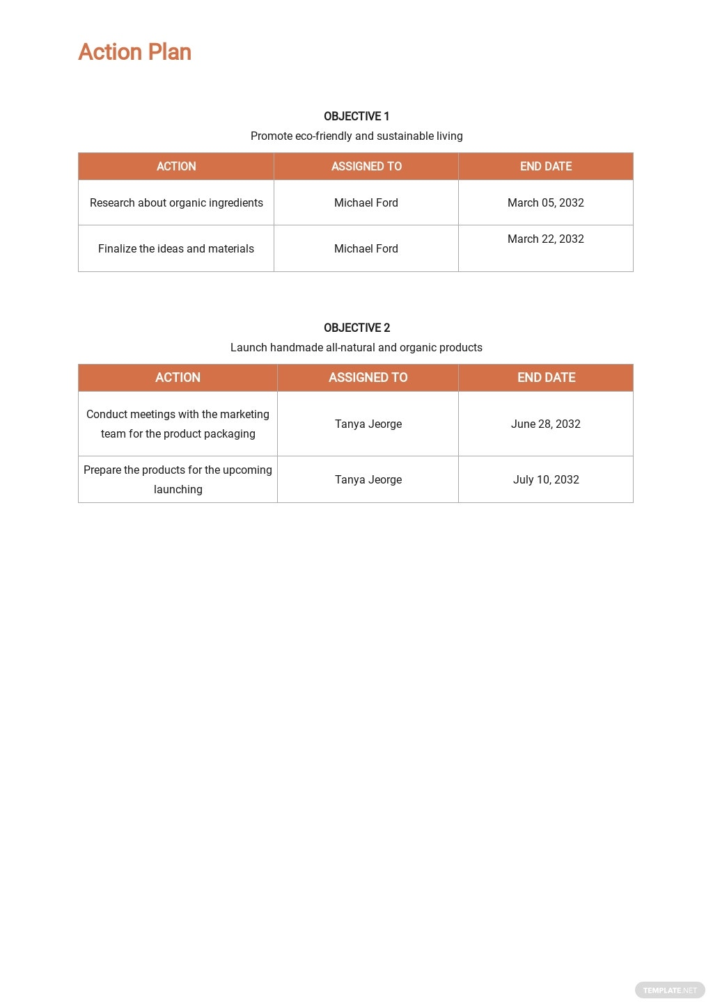Retail Store Project Plan Template 3.jpe