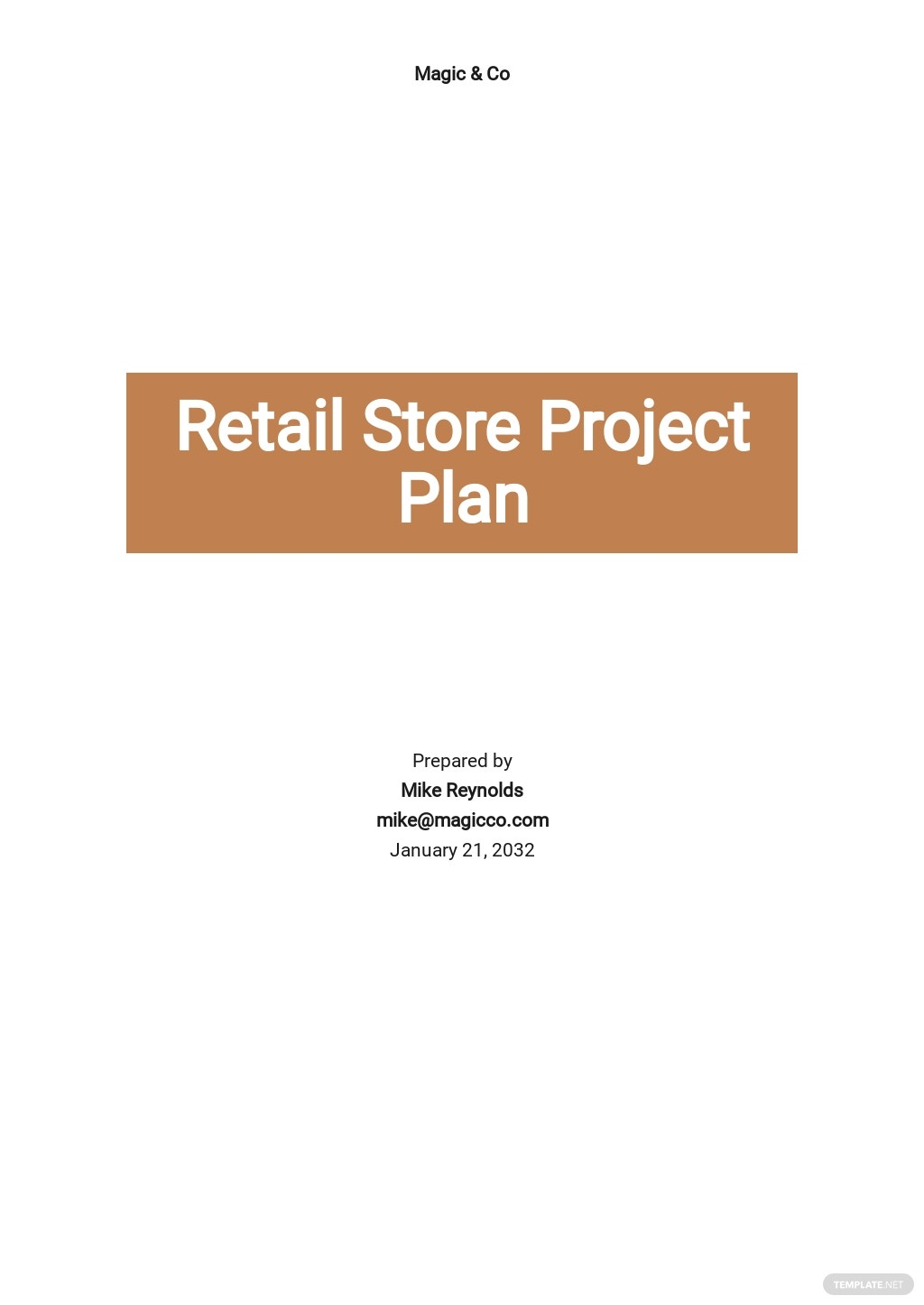 Retail Store Project Plan Template