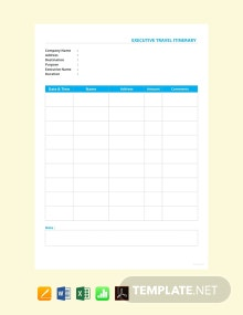 Free Executive Travel Itinerary Template