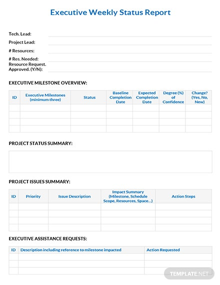 Executive Weekly Status Report Template