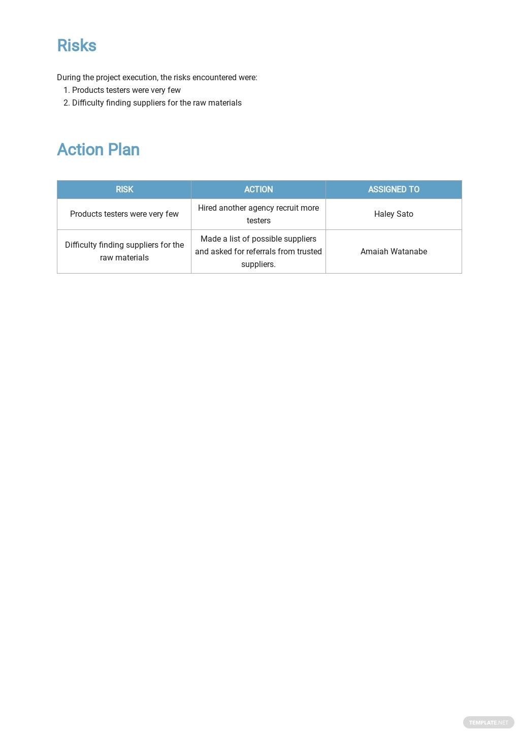 Free Executive Weekly Status Report Template 3.jpe