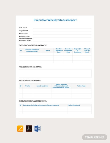Free Executive Weekly Status Report Template