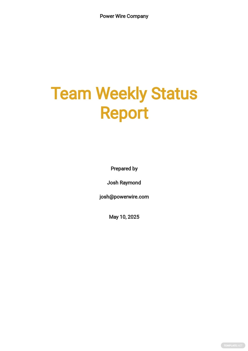 Team Weekly Status Report Template