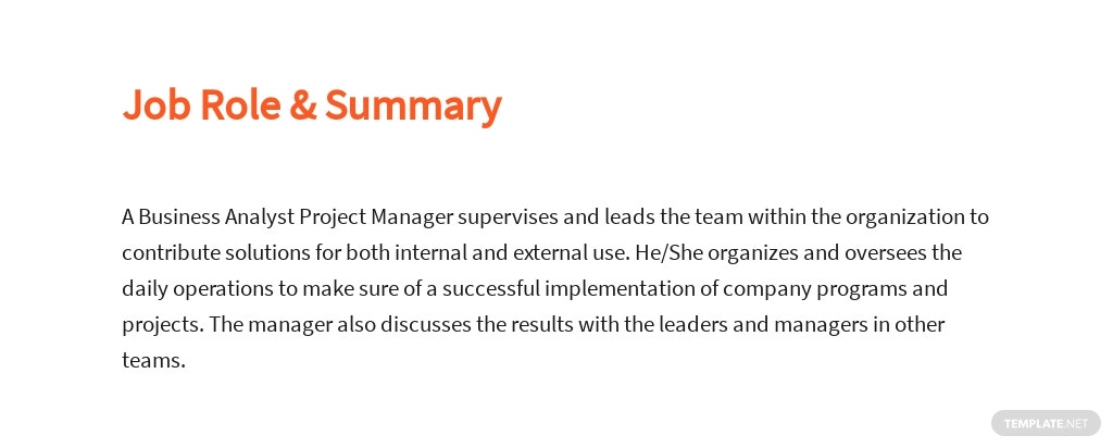 Free Business Analyst Project Manager Job Ad/Description Template 2.jpe