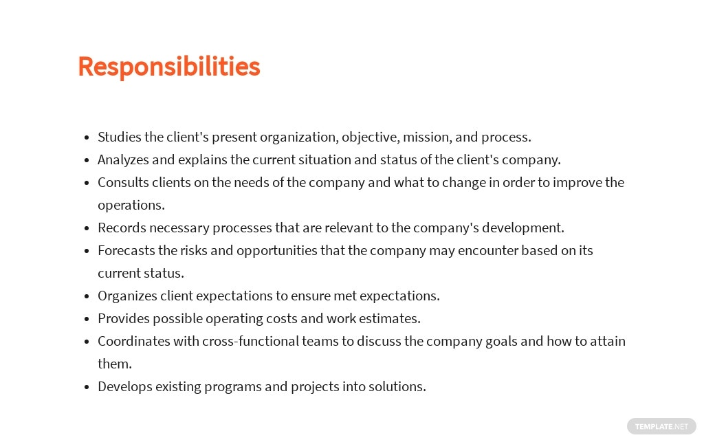 Free Business Analyst Project Manager Job Ad/Description Template 3.jpe