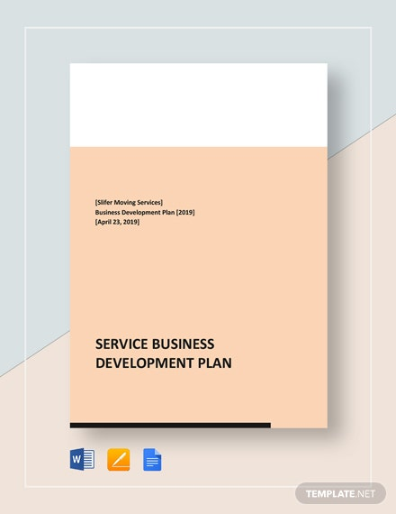 Service Business Development Plan