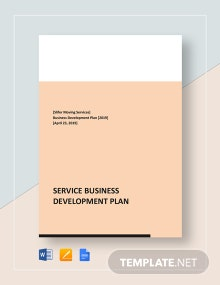 Service Business Development Plan Template