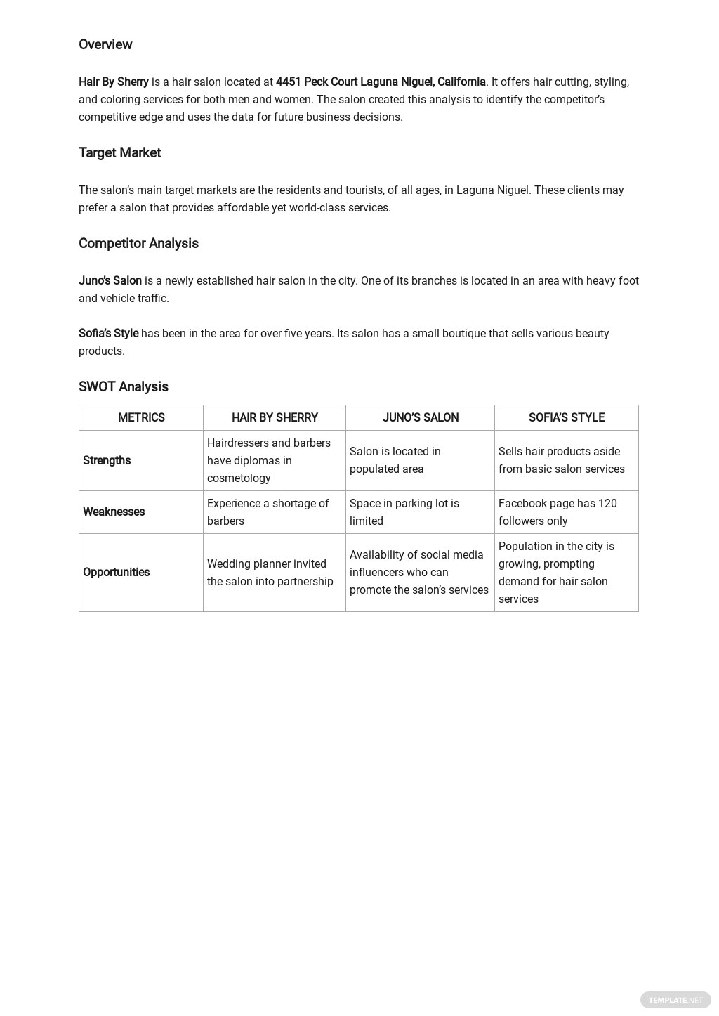 Salon competitive analysis template 1.jpe