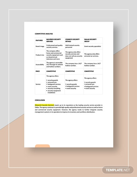 Security services competitive analysis Download