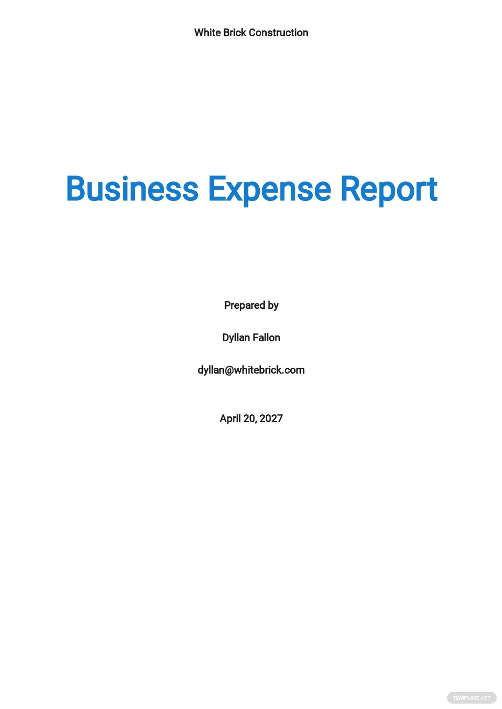 Free Business Expense Report Template.jpe