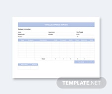 Vehicle Expense Report Template