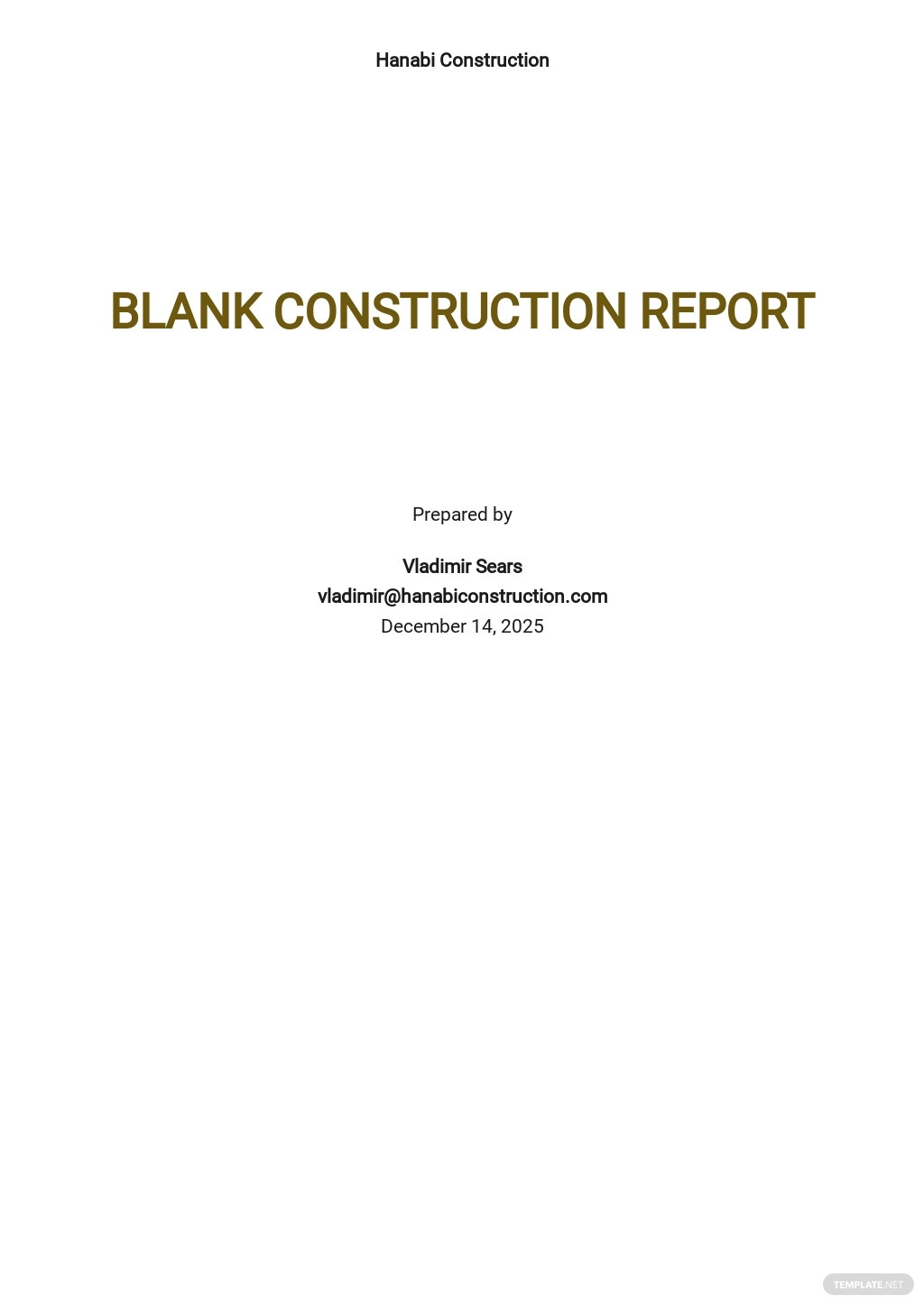 Blank Construction Report Template [Free PDF] - Google Docs, Word