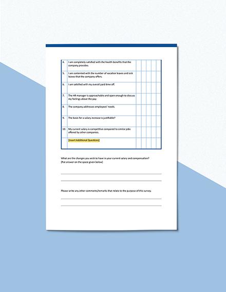 Compensation Survey Format