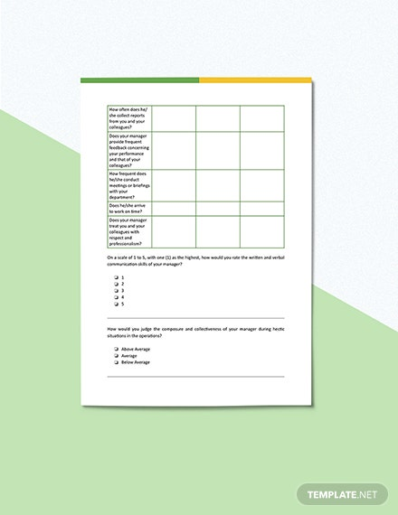 Employee Feedback Survey for Manager Template Format
