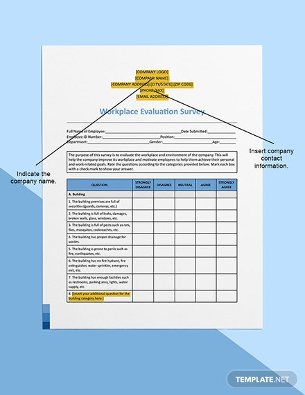Workplace Evaluation Survey Printable