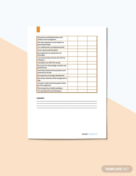 Job Satisfaction Survey Format