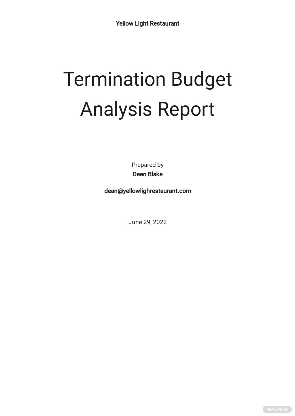 Termination Budget Analysis Report Template