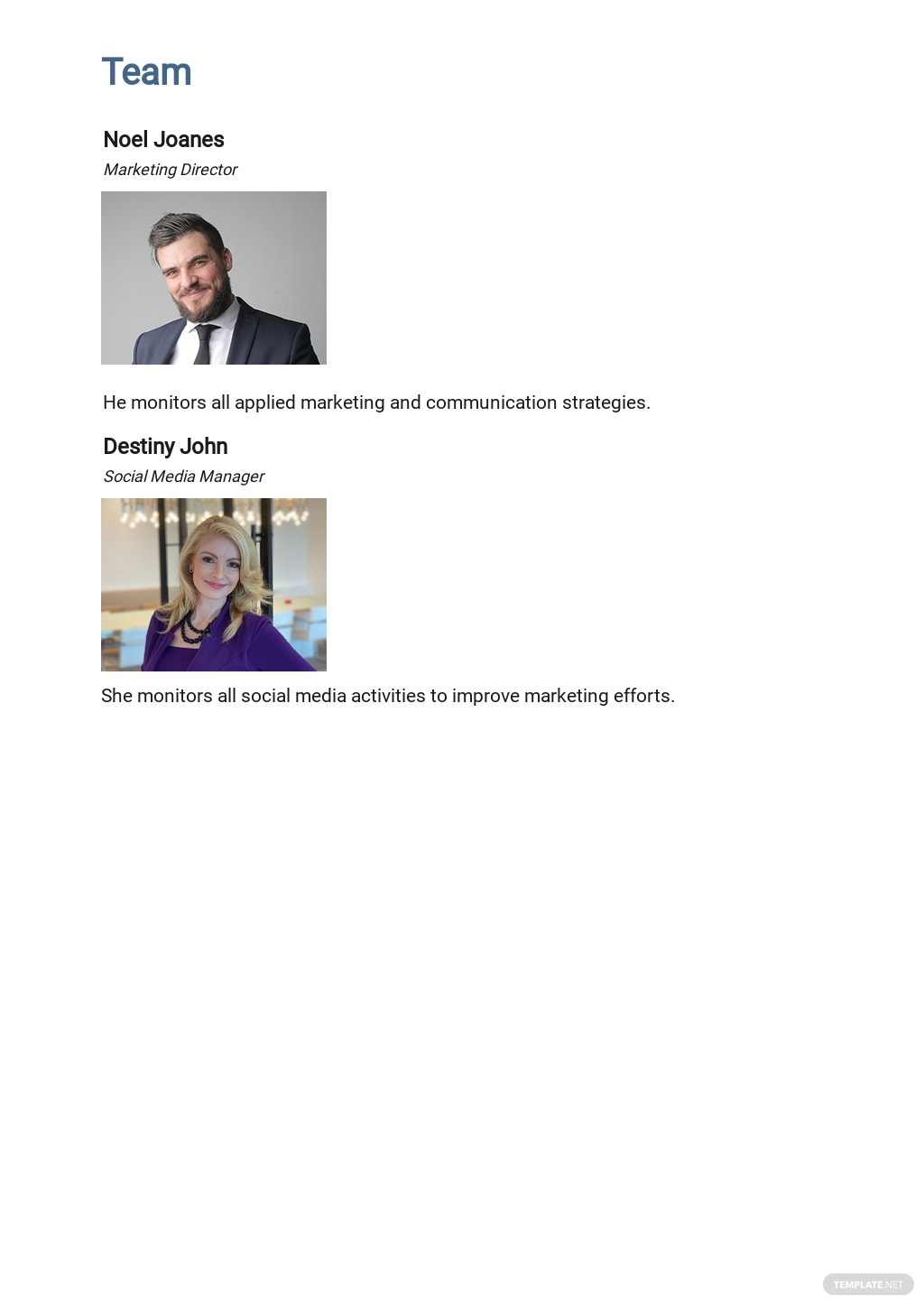 Free HR Communication Plan Template 2.jpe