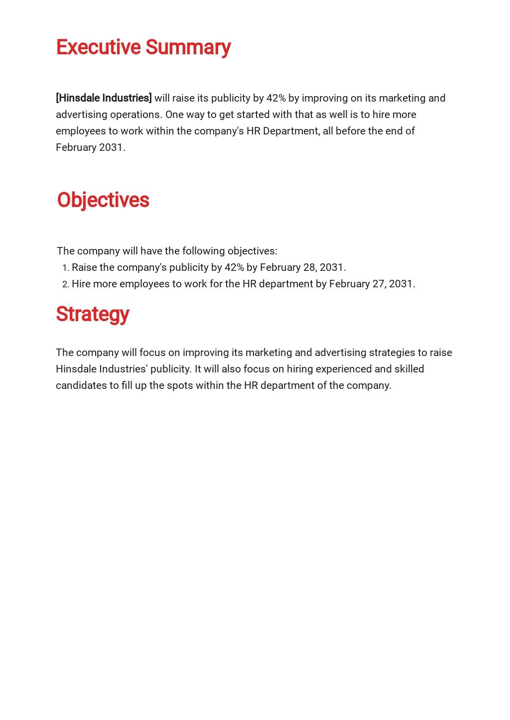 HR Strategy Plan Template 1.jpe