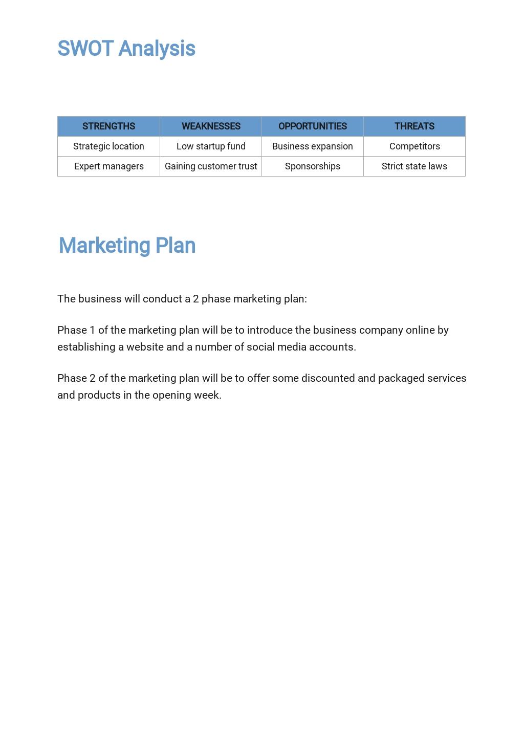 Free Sample Information Technology Business Plan Template 3.jpe