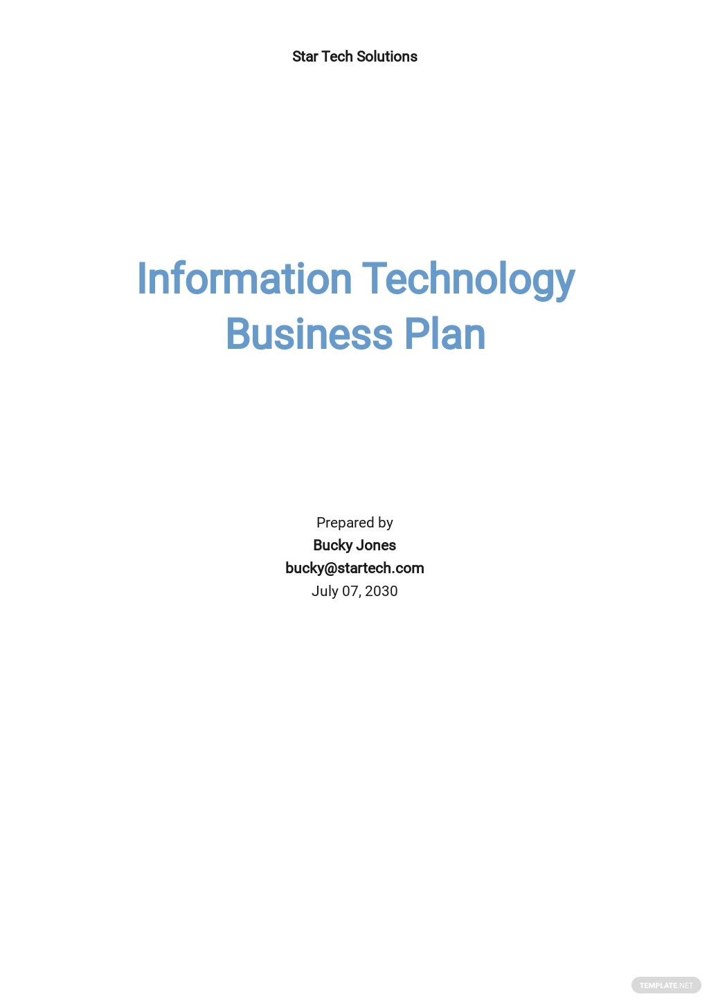 Sample Information Technology Business Plan Template