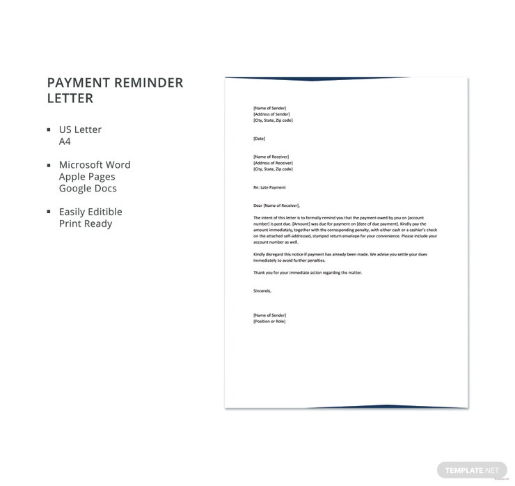10 payment reminder letter templates pdf doc free premium payment reminder letter template spiritdancerdesigns Images