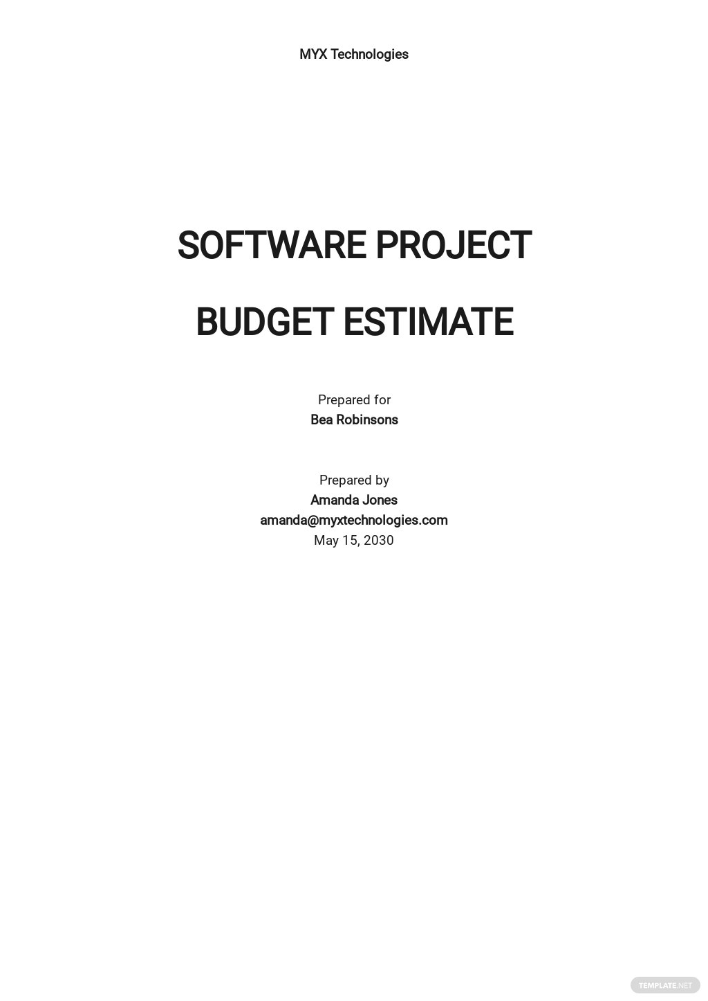 Software Project Budget Estimate Template