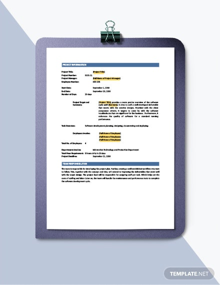 Software Development Statement of Work Template download
