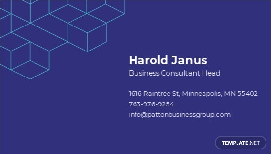 Business Advisor Business Card Template 1.jpe